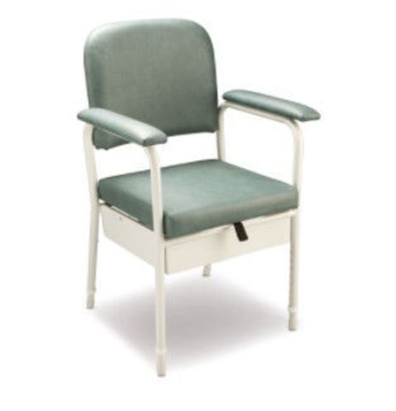 Picture of Deluxe Bedside Commode